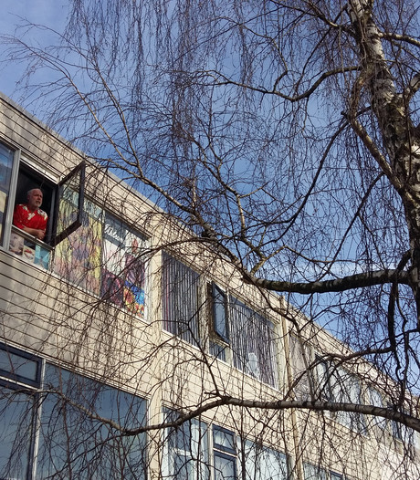 Edese boom omhakken? 'Als het moet, spring ik erin'
