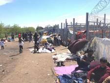 Asielzoekers langs Hongaarse grens als beesten behandeld