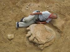 Enorme voetafdruk van dinosaurus gevonden in Mongolië