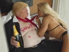 Britse riskeert vervolging om satirische foto's met Trump