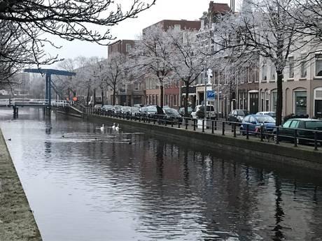 Vorst tovert Den Haag om tot winterparadijs