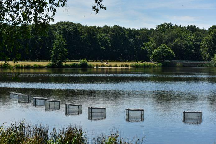 Een van de waterplassen bij Het Lido en het Hoefsven in Waalwijk.
