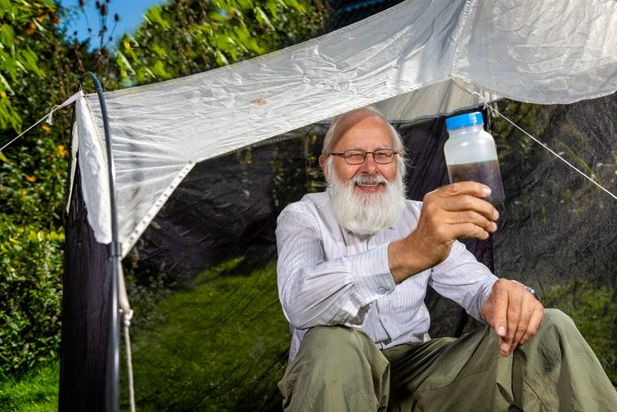 Professor Kees van Achterberg in zijn sluipwespen vangtent. Een vangst houdt hij triomfantelijk vast. Rubriek Onder professoren