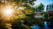 Docenten Hogeschool PXL houden  hoofd koel in Japanse tuin