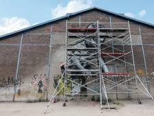 Graffiti met graffiti bestrijden in Doesburg: 'Mijn werk moet het oude Doesburg met het nieuwe verbinden'