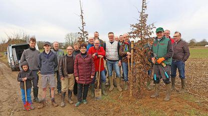 Historische dreef krijgt 166 nieuwe bomen