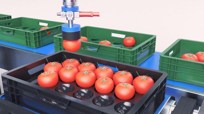 One of A Kind Technologies kan na de overname van KOAT complete systemen leveren voor geautomiseerde productieverwerking in de tuinbouw.