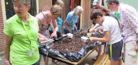 Op zoek naar kriebelbeestjes tijdens het kinderfestival Geldrop