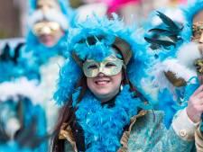 Waar is er hier eigenlijk een carnavalsoptocht te zien?