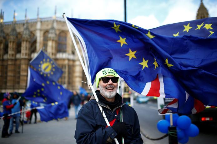 Anti-brexit demonstranten voor het Britse parlementsgebouw in Londen.