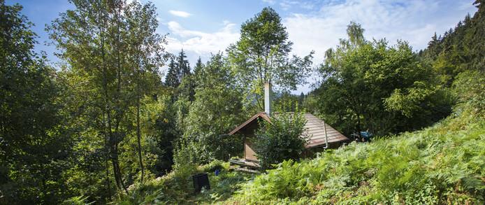 De chalet ligt midden het bos.