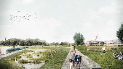 Groene zone achter Burchtdam wordt waterbufferend landschapspark en betere waterwerking in Pollarewijk