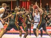 Basketbalkampioen Landstede Hammers uit Zwolle ziet af van Europees avontuur: het is te duur