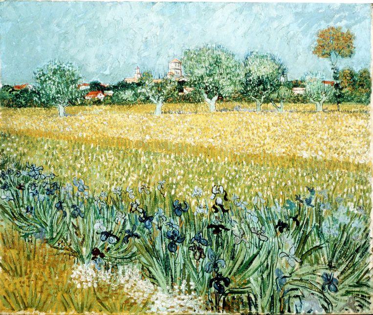'Veld met irissen bij Arles' van Van Gogh. Beeld afp