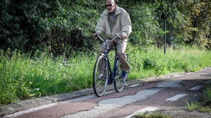Vlaming is tevreden over buurt en gemeente, maar klaagt over staat van fiets- en voetpaden