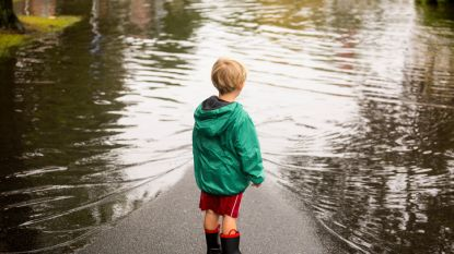 """Klimaatwetenschapper luidt alarmbel: """"Hittegolf van deze zomer wordt de norm, Vlaanderen komt voor deel onder water te liggen"""""""