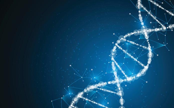 Oude DNA-sporen wezen in 2015 een Belg aan als verdachte van een drugsmoord in 2001 in Bladel. Hij is nu tijdelijk vrij.