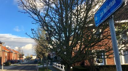 Ouder koppel brutaal overvallen in hun eigen huis in Sint-Amands