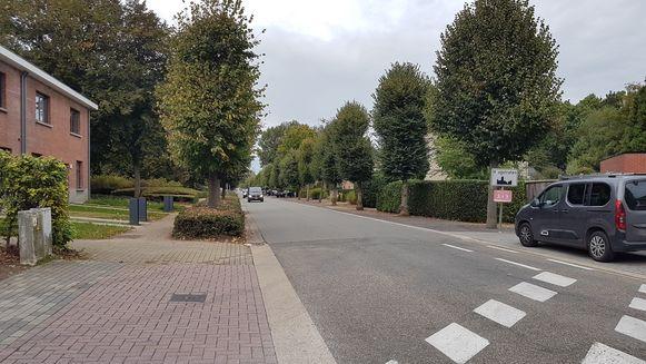 De drie incidenten gebeurden allemaal  in de omgeving van de Lindendreef.