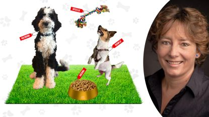 Hondenverkoop piekt: dit is het kostenplaatje van een viervoeter