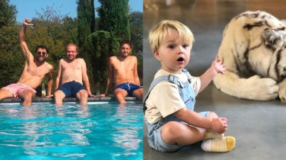 SHOWBITS. Sieg De Doncker heeft het warm en het zoontje van Karl Vannieuwkerke beleeft een bijzondere dag