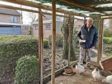 Piet (82) zit vast in zijn te grote huis met te grote tuin; de kleine huizen zijn op