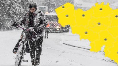 Tot 10 centimeter sneeuw: KMI kondigt 'code geel' af, ontdek hier hoeveel bij jou voorspeld is