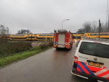 Treinen tussen Culemborg en Tiel rijden weer na aanrijding