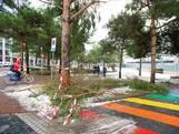 Strooiploegen Apeldoorn kunnen piek sneeuwval niet aan
