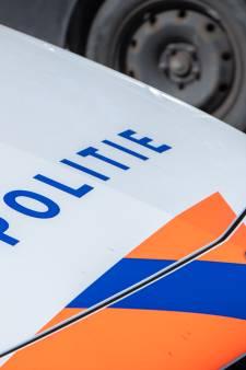 Dode vos zorgt voor problemen op A50 bij Apeldoorn