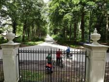 Boomchirurg en klimaatclub willen beuken in Leersum onderhouden om kap te voorkomen