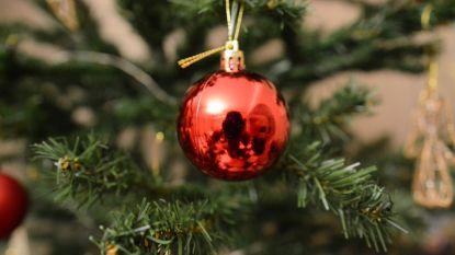 Eeklo denkt aan 'kerstboomadoptiebos'