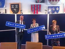 Naam fusiegemeente Geldermalsen, Neerijnen en Lingewaal volgende week bekend