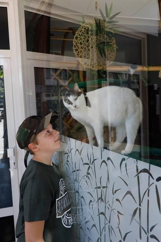 Luca met de kat Tobias, die altijd in het vensterraam zit