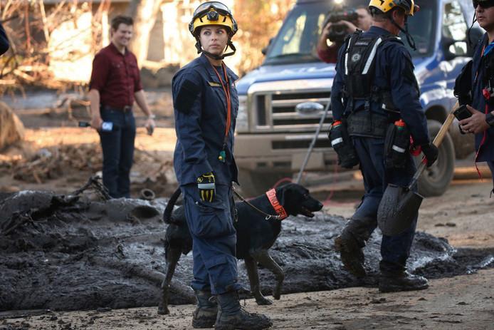 Californische brandweerlieden zoeken met hulp van reddingshonden naar de vermoedelijk nog 47 vermiste bewoners uit Montecito nadat de streek afgelopen week werd getroffen door een modderstroom. Foto Al Seib
