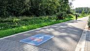 Gemeente investeert 50.000 euro voor definitieve inrichting fietsstraten