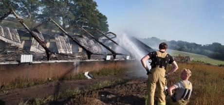 Duizenden kippen dood na schuurbrand Beltrum: 'Dierenleed. Verdomme, doen wij het ook niet voor'