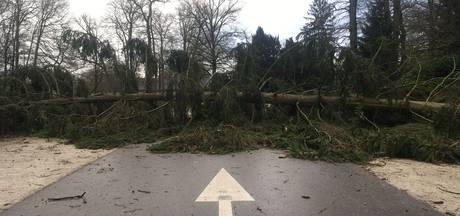 Storm houdt huis op landgoederen Hof van Twente