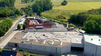 Honderden bierbakken op dak brouwerij