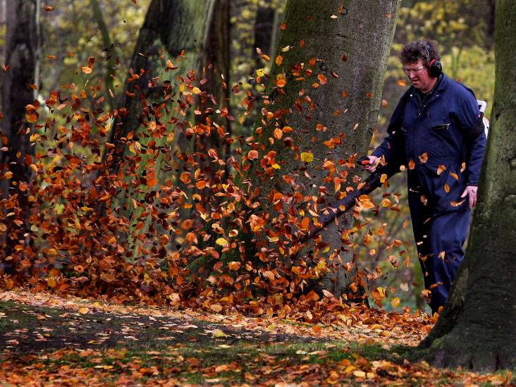 'Het Groene Hart is prachtig in de herfst'