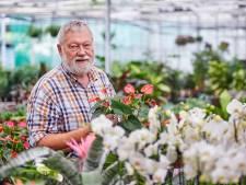 Ossenaar Ben de Bruijn neemt afscheid van begonia's en slaapkamergeluk