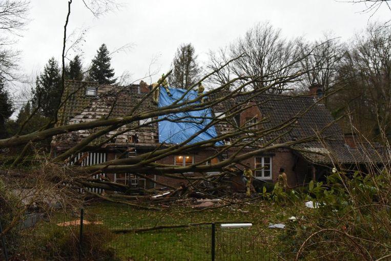 Boom op huis in Overijse