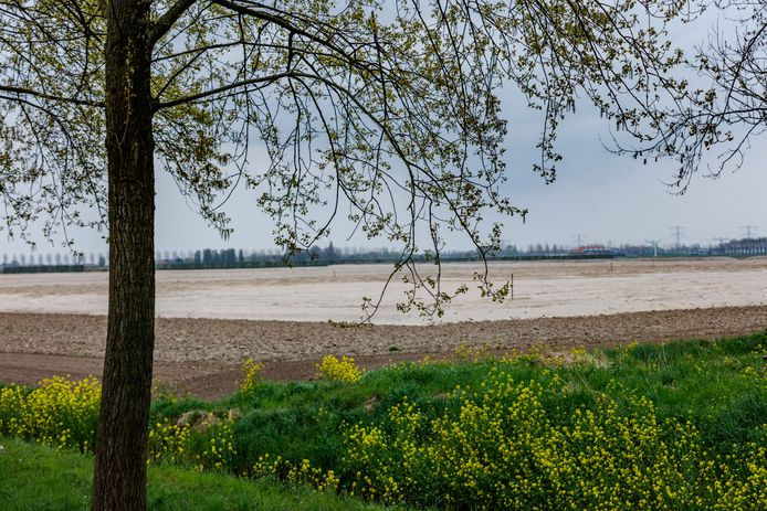Het gebied waar het LPM Moerdijk zou moeten komen - de oksel van A16 en A17 - ligt al jaren te wachten op een besluit van de Raad van State.