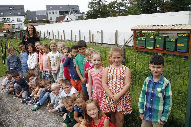 Leerlingen van de Bijenkorf bij de bijenkasten.