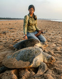Divya Karnad met schildpadden op het strand. Zij is een van de drie winnaars van de Future For Nature Award prijs van 2019.