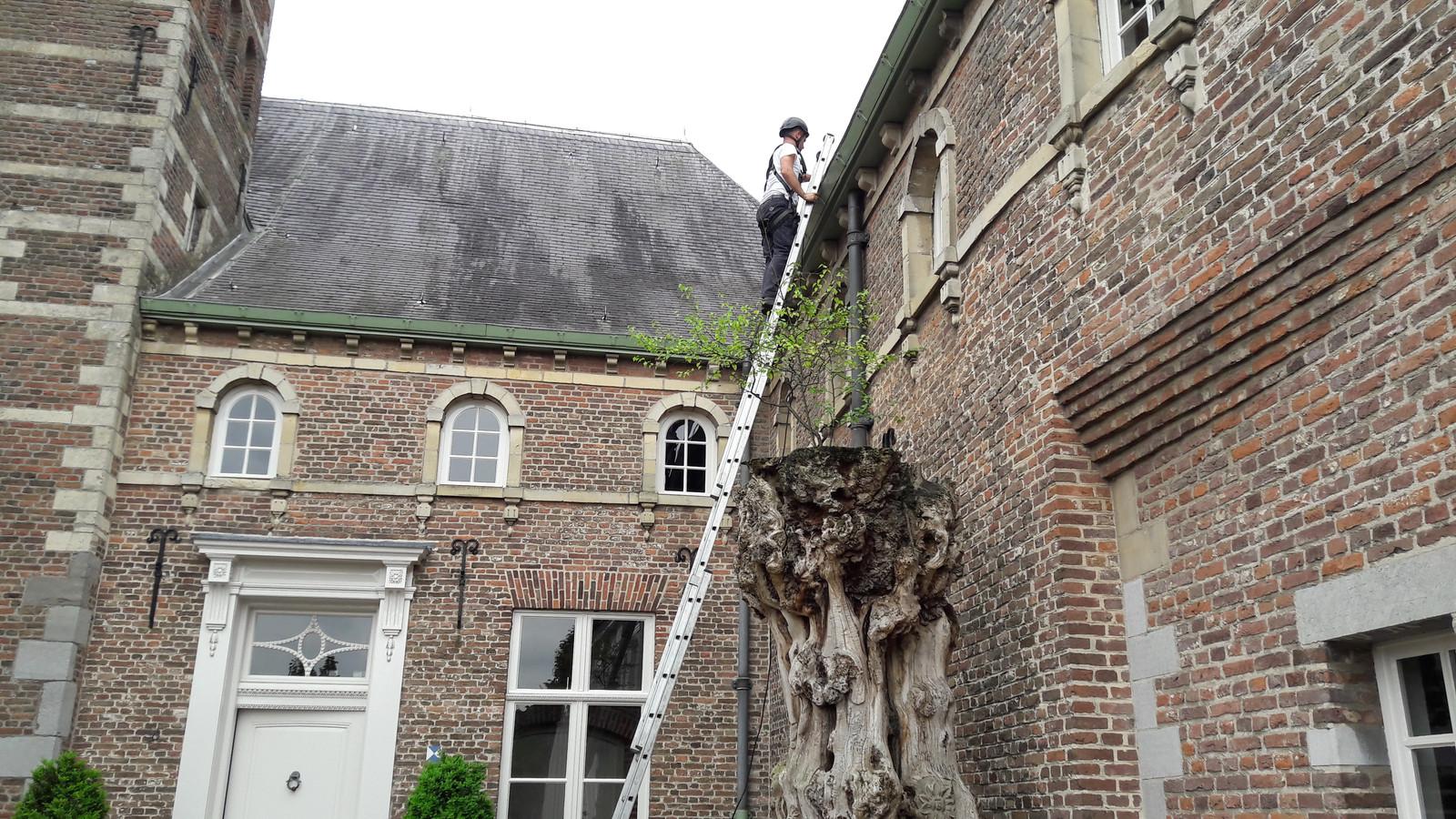 Het bestuurscentrum van Meierijstad in Sint-Oedenrode staat voor een groot deel leeg. Ook dit gebouw hoort bij het vastgoed van Meierijstad.