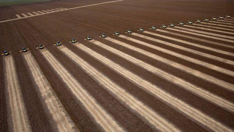 de sojaoogst op een reusachtige plantage in Brazilië