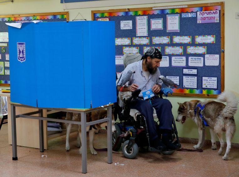 Een man in een rolstoel, begeleid door twee honden en een papegaai, staat op het punt om zijn stem uit te brengen in Tel Aviv.  Beeld AFP