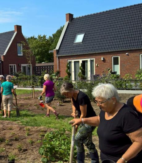 Al volop belangstelling voor 'knarrenhof' op Schouwen-Duiveland