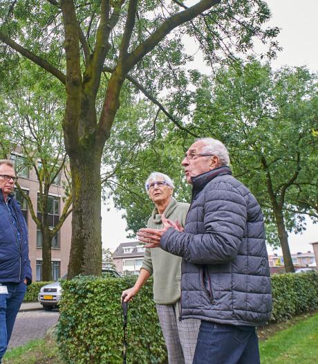 Greet vecht voor 'essentiële' Osse essen: 'Tien bomen behandelen, ik betaal het zelf'